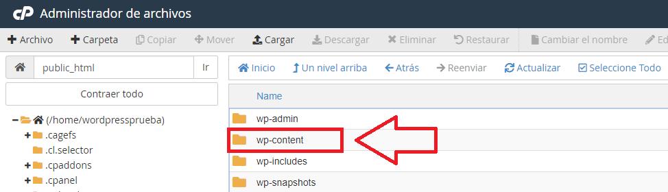 carpeta content solucionar pantalla blanca de la muerte en WordPress