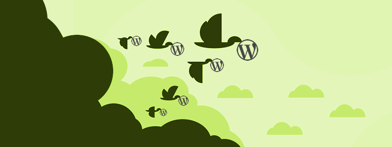 Cómo migrar WordPress desde localhost a tu hosting