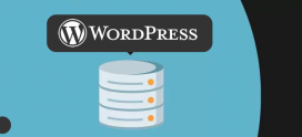 Base de datos de WordPress: estructura de datos, acceder y editar