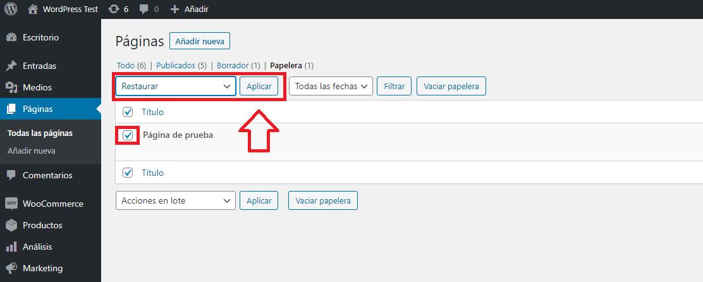 entrada pagina wordpress papelera botón restaurar