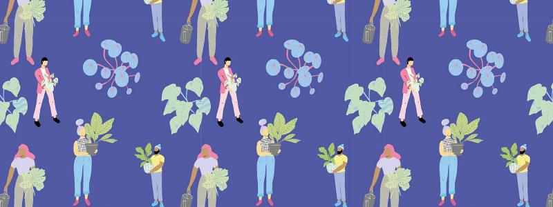 Por qué incorporar plantas a tu espacio de trabajo